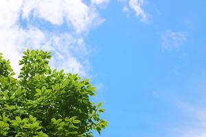 5-7月【WEB限定】夏を楽しむ♪ペア限定プラン